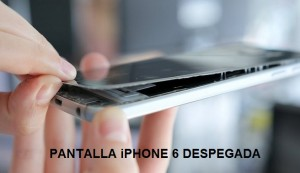 IPHONE 6 PANTALLA DESPEGADA DEL MARCO